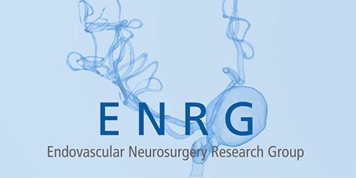 Endovascular Neurosurgery Research Group